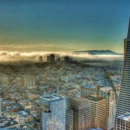 """""""Carl"""" the Fog"""