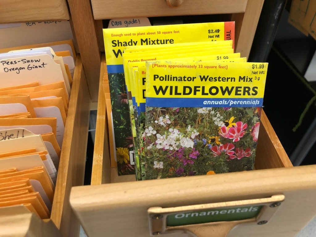 Wildflower seed packets in the USF seed library