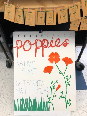 Poster courtesy of Seed Library Student Assistant, Sabrina