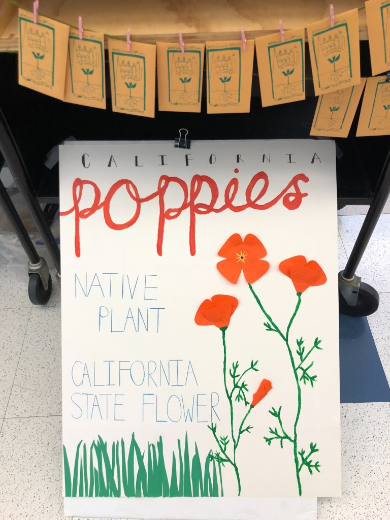 sign of California Poppies, a native plant and state flower