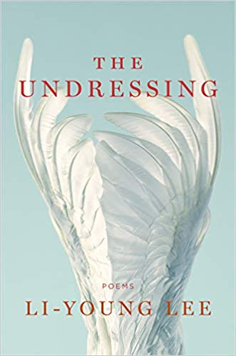 book cover of The Undressing