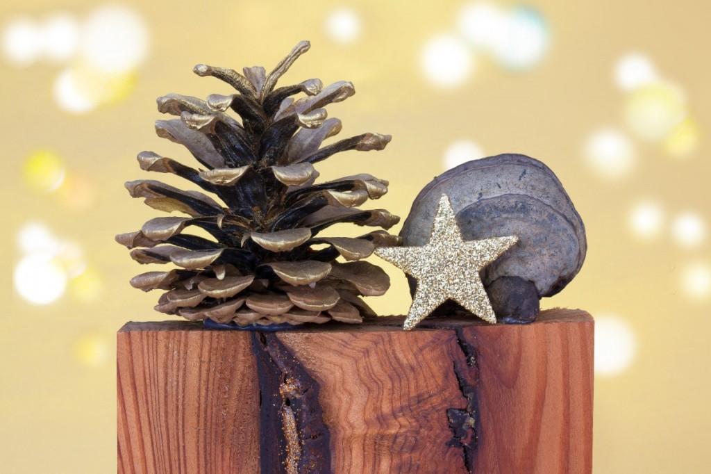 Gold leafed pine cone next to gold glitter star and rock on top of block of wood