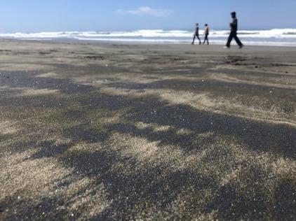 Image of 3 people walking along a beach